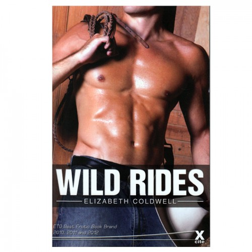 Wild Rides Erotic Story Book